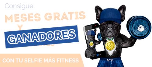 Ganadores del concurso: Selfie Fitness
